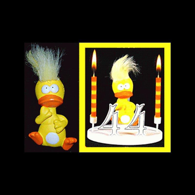 Le Punki canard pour anniversaire