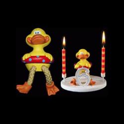 Le canard de la ménagerie pour anniversaire