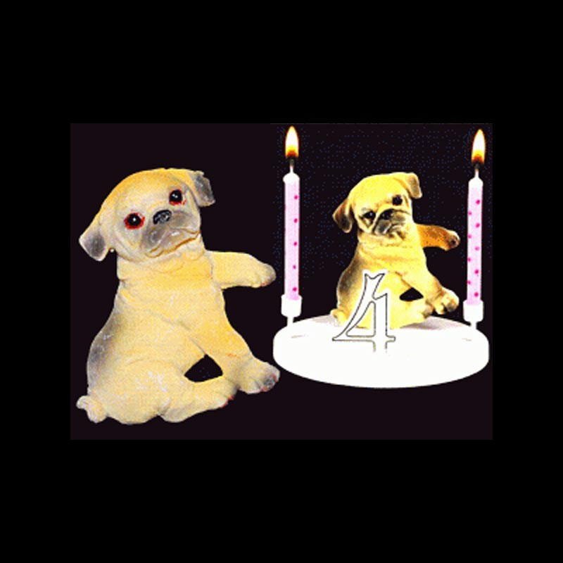 Le chien bouledogue pour anniversaire