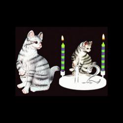 Le chat tigre gris pour anniversaire