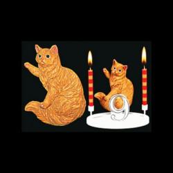 Le chat rouquin pour anniversaire