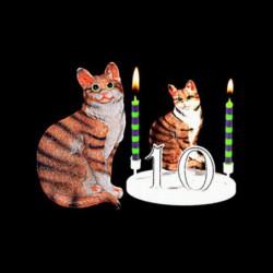 Le chat tigre brun pour anniversaire