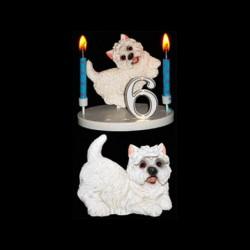 Le chien caniche pour anniversaire