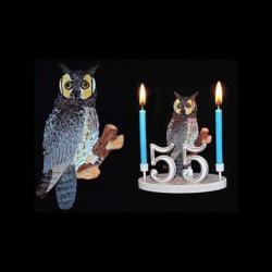 Hibou grand duc pour anniversaire