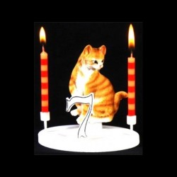 Le chat tigre roux pour anniversaire
