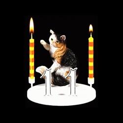 Le chat marbre pour anniversaire