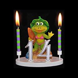La grenouille Mme Surfeuse pour anniversaire