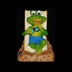 La grenouille Mr. Bronze pour anniversaire